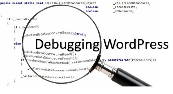 Custom WordPress Plugin Integrations