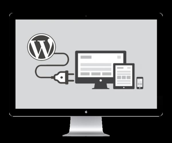 WordPress plugin integration services by Blueprinted Marketing