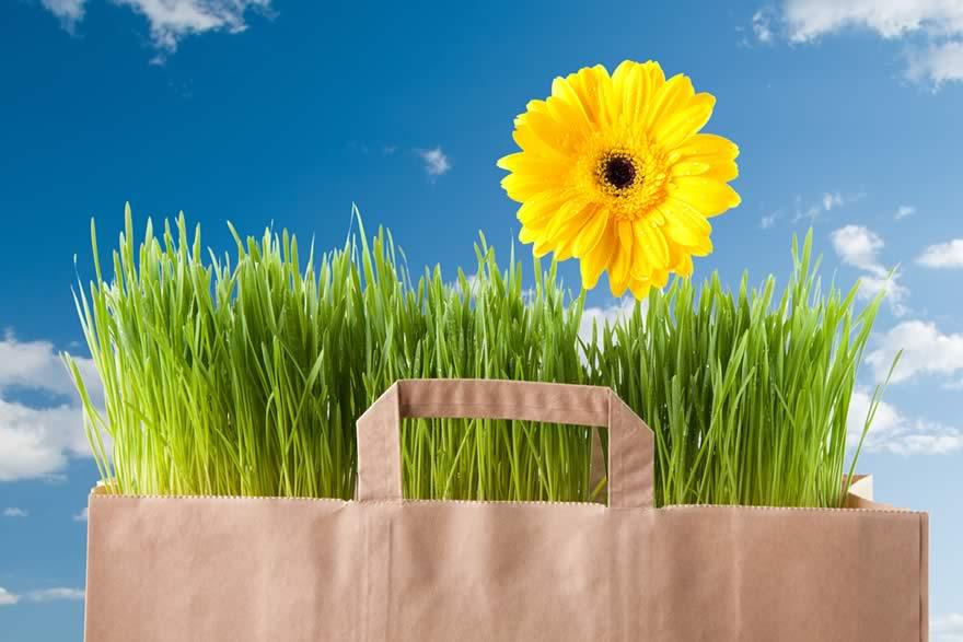 Digital Advertising during Spring